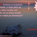 Meditatia zilei (19.12.2011)Ferice de cei cu inima curata !