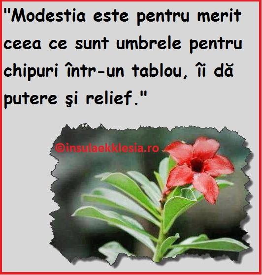 imagini modestia