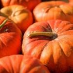 Sanatatea noastra: 7 alimente importante ale toamnei