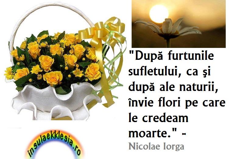 Nicolae Iorga,citate