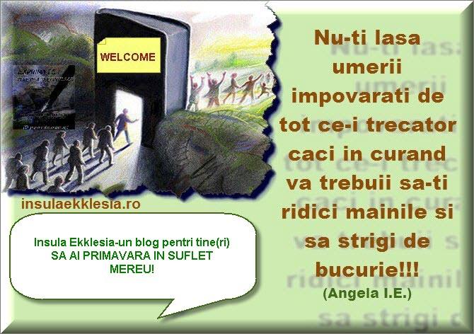 by insulaekklesia.ro
