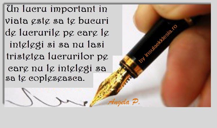 sa-nu-te-paraseasca-by-Insula-Ekklesia-300x173 - Copie