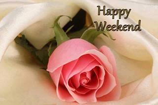 happy weekend,trandafir