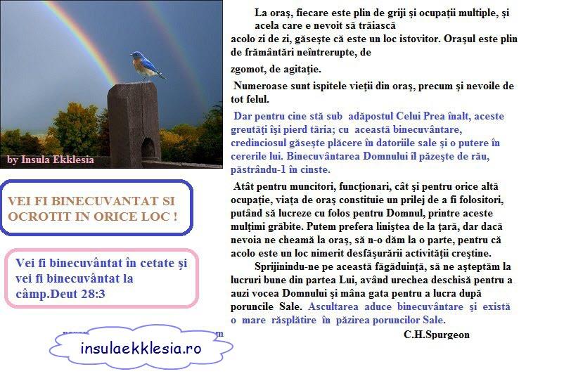 insula ekklesia,Spurgeon