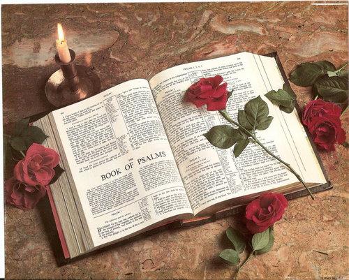 Rose-god-the-creator-25096694-500-401